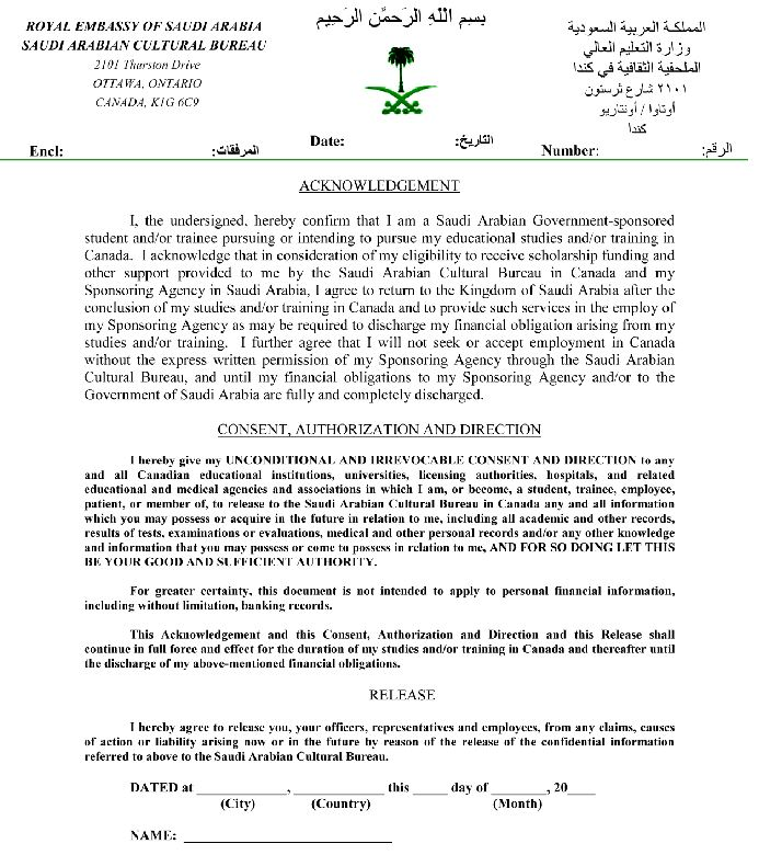 University Conditional Acceptance Letter Sample